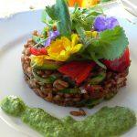スペルト小麦とミスティカンツァの野草サラダ ルッコラのペースト添え